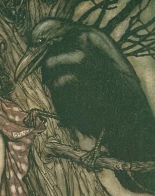 Skannon the Crow